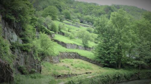 Altenahr, aufgelassene Weinberge
