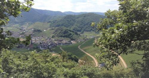 Mayschoss und die Eifel